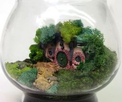 WOW! Ada Taman Mini Dalam Stoples dan Bohlam!