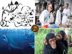 7 Fakta Salah Teori Evolusi Yang Dipercaya Banyak Orang