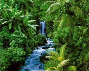 Heaven Earth Julukan ini diberikan kepada Indonesia karena banyak Negara dunia iri dengan kekayaan alam Indonesia yang subur dengan hasil bumi yang melimpah dan pemandangan yang memanjakan mata
