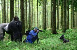 Konyol! 13 Foto ini mengabadikan Perilaku Fotografer yang lucu