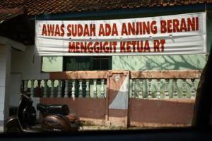 cuman di indonesia, ketua RT lemah kepada anjing..