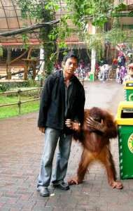 binatang pun malu foto sama manusia..