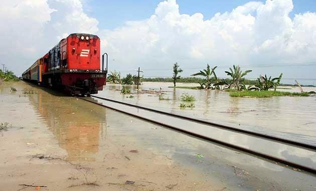 lewat tengah sawah yang banjir