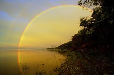 Foto pelangi di belakang hutan dan danau oleh Patrick Emerson
