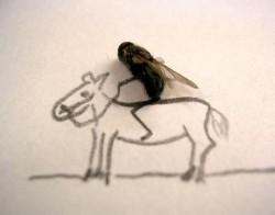 Gila! Lalat-lalat Mati jadi Objek Karya Seni