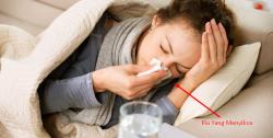 Obat Tradisional Flu Menahun