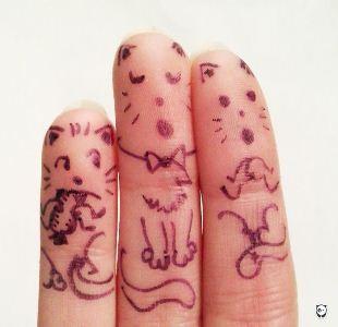 Tiga anak kucing
