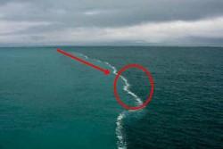 Tahukah Kamu Bahwa Dua Laut Tidak Menyatu Di Jelaskan Dalam Al Quran