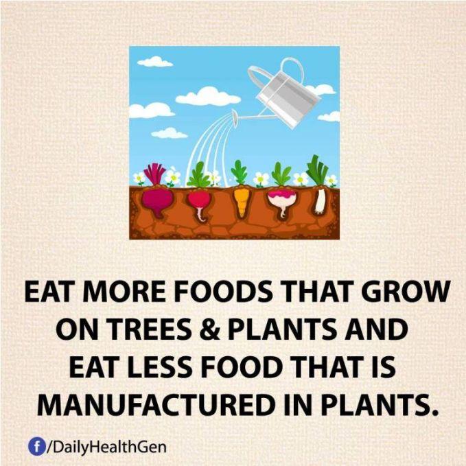 #27 Makanlah makanan sehat yang banyak!