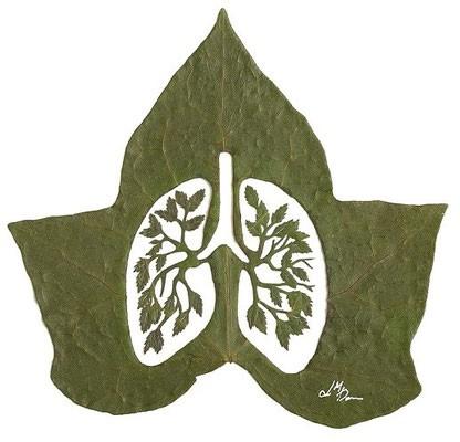 #11 Ada sepasang paru-paru untuk bernapas