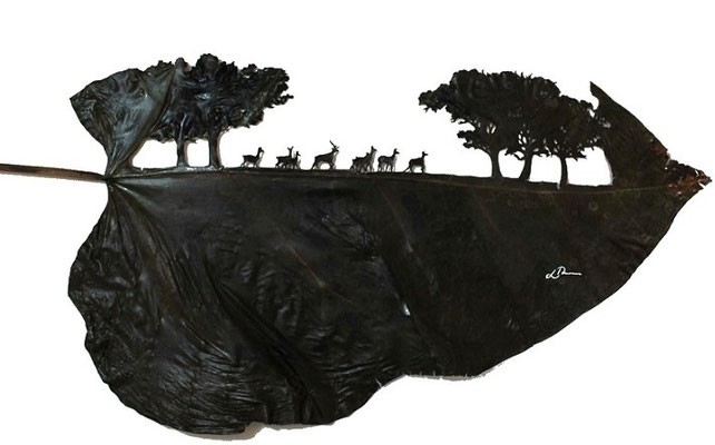 #16 Kehidupan kawanan binatang di antara pepohonan