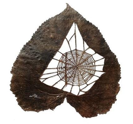 #20 Ada sebuah sarang laba-laba