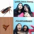 20 Meme NGAKAK Ada KECOA TERBANG MENYERANG!