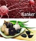 Manfaat Dan Khasiat Bawang Hitam Sebagai Obat Kanker