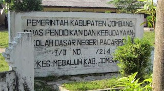 Desa pacar peluk ada di kabupaten jombang, Jawa Timur