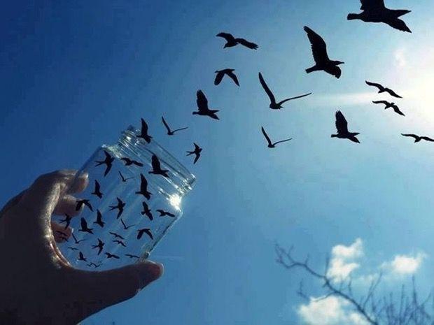 WOW..burungnya keluar dari toples..Sempurna!