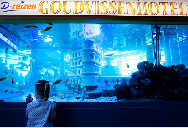 Sebuah iklan yang sepertinya menghabiskan banyak biaya, mereka membuat Aquarium Besar dengan ikan sungguhan yang indah