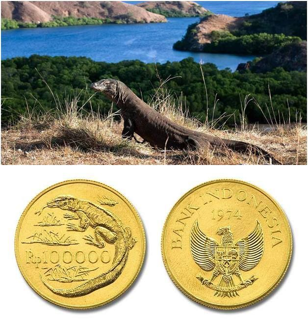 Koin gambar komodo khas Pulau Komodo.