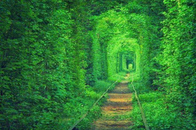 Terowongan Cinta Saat kamu berkunjung ke Klevan, Ukraina, jangan lupa untuk mengunjungi Terowongan Cinta atau Tunnel of Love yang ada di sana. Turis dapat menikmati keindahan terowongan sepanjang 3 kilometer yang tampak diselimuti dedaunan rimbun ini.