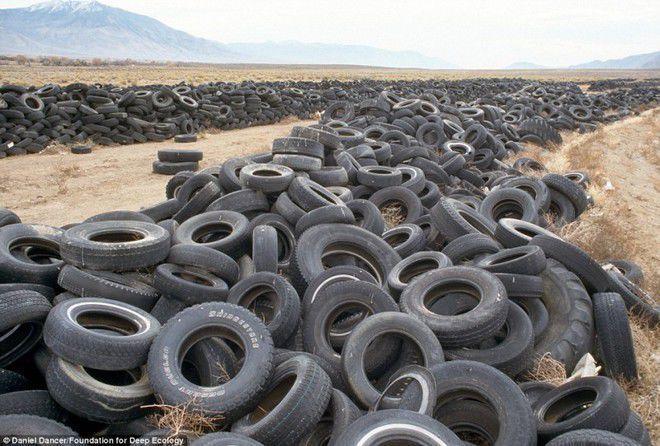 Foto 3 : Ban Bekas Lazimnya sebuah gurun di bumi ini akan dihuni pasir dan tanaman kaktus tapi di Nevada ini gurun pasirnya malah dipenuhi sampah ban bekas begini. Coba saja bayangkan kalau terus menumpuk banyak dan semakin bertambah begitu?