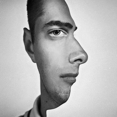 Seni arstistik yang mampu menghasilkan prespektif wajah depan dan samping...
