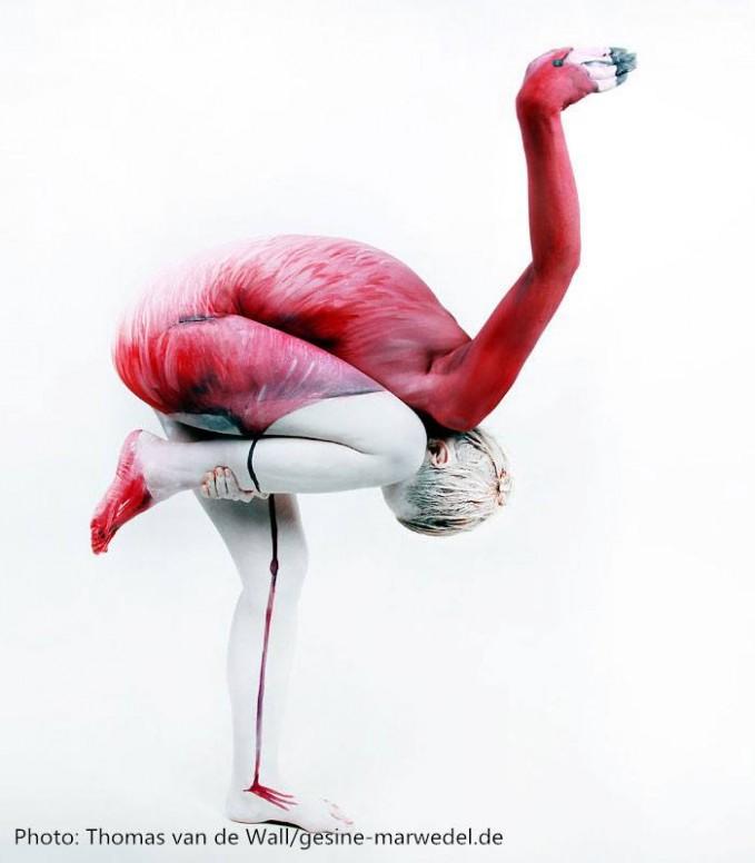 Pose Flamingo ini terlihat begitu menyiksa model yang memperagakannya. Bisakah kamu temukan mana bagian kepala ?