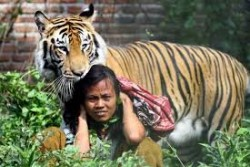 Gila ! 10 Foto Interaksi Manusia Dan Binatang Ini Sulit Dipercaya