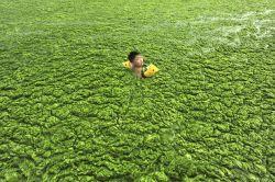 Foto-Foto Mengejutkan Tentang Polusi Buruk Di China..Miris!