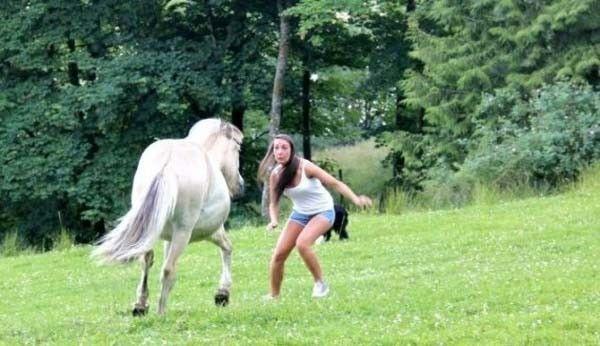 tuh kan, kalo kuda mending jangan macem-macem deh..