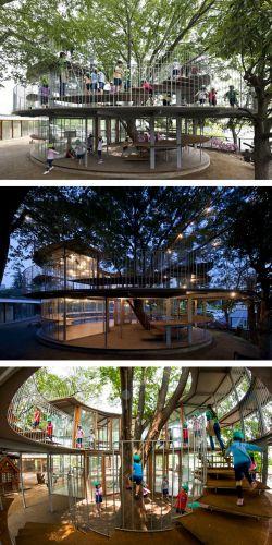 Ide Jenius Membangun Rumah dan Bangunan Tanpa Menebang Pohon Sekitar, Keren!
