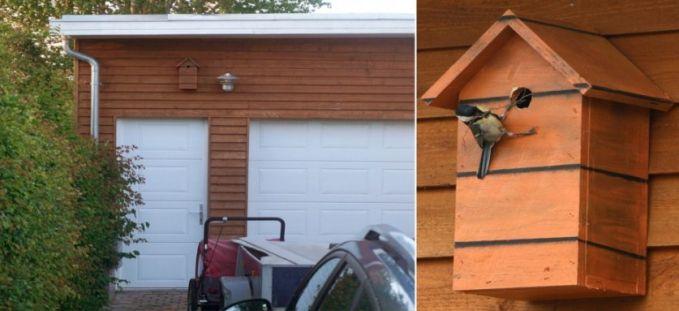#4 KAMUFLASE KAYU Rumah burung ini dipasang pada dinding rumah yang terbuat dari kayu. Tampak seekor burung yang sudah tertarik untuk tinggal di sana.