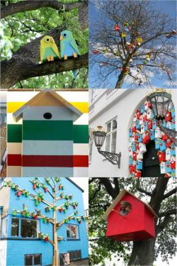 [10 FOTO] Kreasi Seni Rumah Burung untuk di Perkotaan