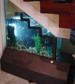 Kumpulan Desain Aquarium Yang Luar Biasa Unik dan Menakjubkan!
