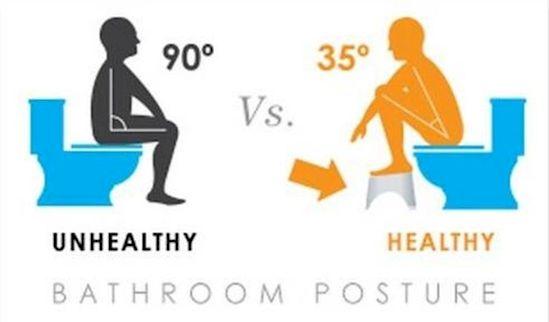 hayo siapa yang sering jongkok di wc duduk? jangan ya, bahaya. ini nih cara menggunakan wc duduk yang ebnar.