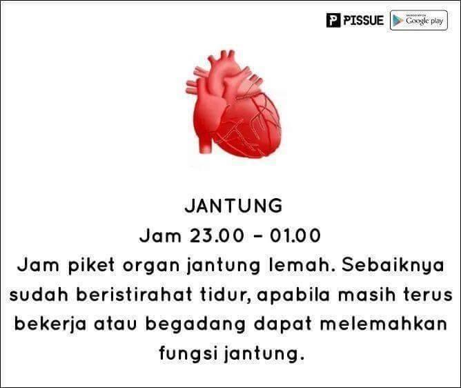 #9 JANTUNG TENGAH MALAM Jantung pada tengah malam dalam kondisi yang terlemah. Jika terus begadang akan melemahkan jantung, sebaiknya tidur.