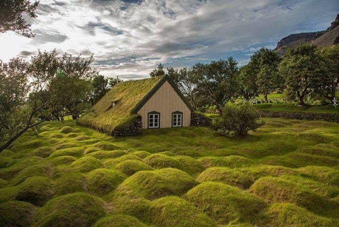Gereja Hofskirkja Turf Gereja Turf Hofskirkja, terbuat dari kayu dan gambut (rumput), adalah salah satu gereja gambut terakhir yang dibuat di Islandia. Gundukan rumput yang kamu lihat sebenarnya adalah kuburan kuno.