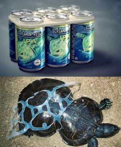 Dampak Sampah Plastik Dari Kemasan Minuman Yang Bikin Hewan Laut Tersiksa Setengah Mati!