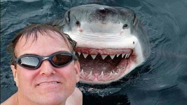 nih om-om gak tau apa ya kalo ada si hiu yang pingin ikutan selfie.. kan kesian kalo gak diajak..