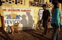 Kumpulan Foto Unik Bayangan yang Berhasil Menipu Mata Kita