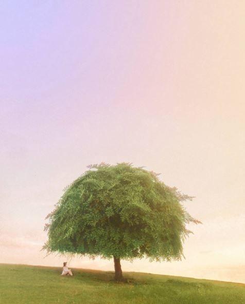 3. Kutuh Village, Badung, Bali Biasanya pemandangan kaya gini cuma bisa kita lihat di lukisan atau foto-foto di luar negeri, tapi ternyata di Desa Kutuh, Bali kamu bisa melihat bahkan merasakan berada di bawah pohon teduh dengan semilir angin yang syahdu.