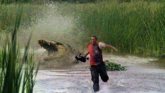 resiko kalo jadi fotografer alam liar, harus sigap dan kakinya cepat!