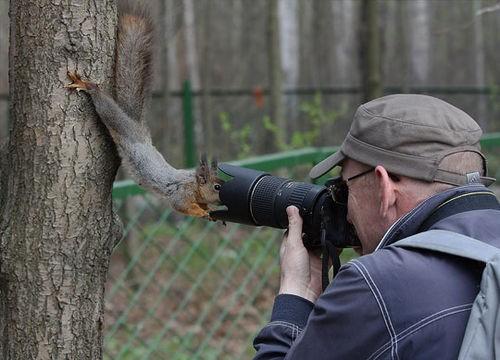 tapi asik ya bagi kalian yang pecinta binatang dan fotografi