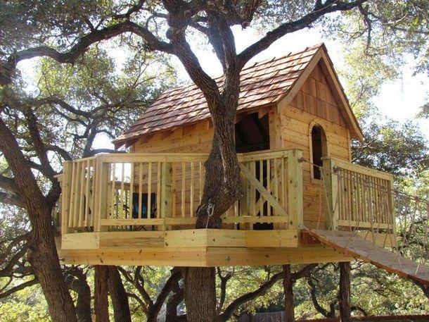 ini nih desain klasik rumah pohon yang penuh dengan nostalgia