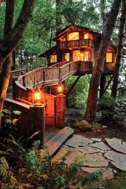 Kayak Gini Nih 10 Desain Rumah Pohon Paling Keren Dan Bikin Melongo!