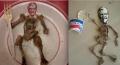 10 Karya Lucu yang terbuat dari Tulang Ayam KFC, bikin NGakak !