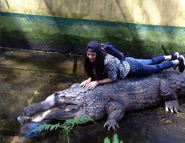 Ternyata buaya ini punya ayah Raline. Buaya ini ia beri nama Opung Croc, dia bilang kalau udah tumbuh besar bareng buaya ini mulai umur 11 tahun, seperti yang di kutip dari caption Instagram Raline.