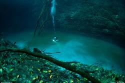 10 Fenomena Alam Aneh Tapi Nyata! Bayangkan, Ada Sungai di Bawah Laut, Bro!