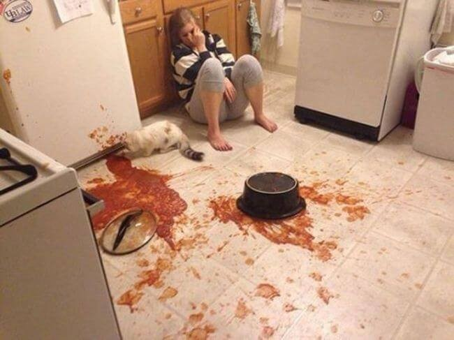 Emang hari yang sial banget buat mbak bule ini, udah masak saus sepanci besar malah tumpah dan berantakan sedapur. Makanya jangan biarin kucingmu main-main di dapur ya kalau nggak mau kejadian ini menimpamu Pulsker!
