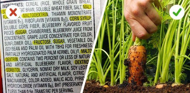Pilihlah makanan organik Makanan organik memang lebih mahal harganya dibandingkan. Tapi ini bisa menjamin hidupmu lebih sehat Pulsker.