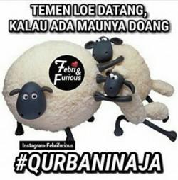 20 Kocaknya Meme #QurbaninAja Kreasi Netizen Ini Bikin Ngakak